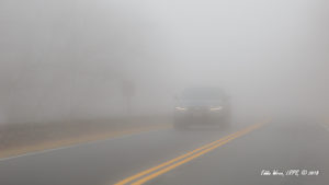 An SUV in thick fog but displaying ony Daytime Running Lights [DRL]. It would have been more conspicuous and much safer to turn on the regular low-beam headlights.
